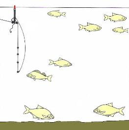 the proper fishing rigs will present the bait right and give you, Reel Combo