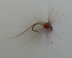 fly fishing, lets go fishing