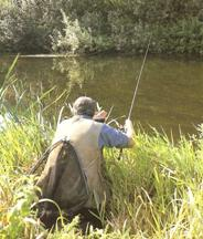 freelining, free line fishing, coarse fishing