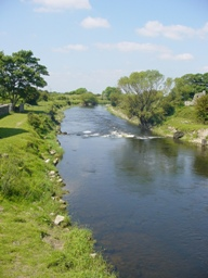 Coarse Fishing on the Clare River at ClareGalway